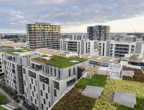 5 Reasons Why a Green Roof Would Benefit Your Condo Building